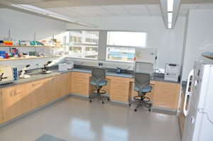 Working station at the Crime Lab